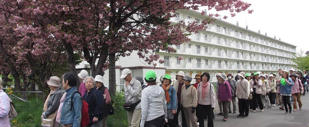 札幌 市 社会 福祉 協議 会 社会福祉法人 北海道社会福祉協議会